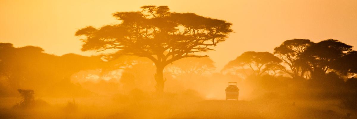Drought in Kenya, Photo by Sergey Pesterev on Unsplash