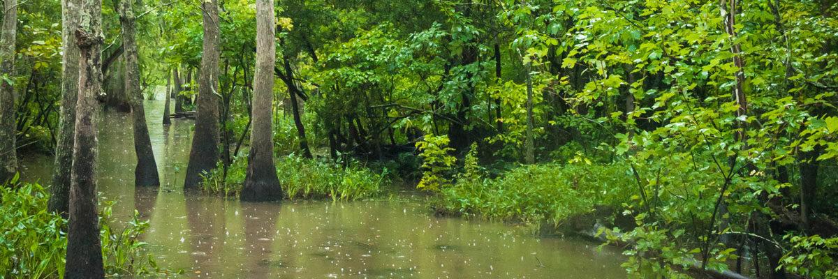 Heavy rain in Lafayette, Louisiana